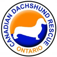 Canadian Dachshund Rescue