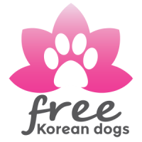 Free Korean Dogs