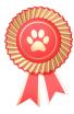 bronze_badge